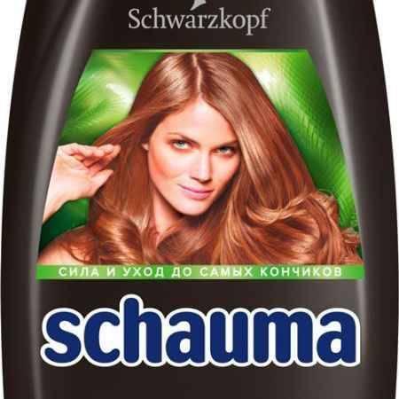 Купить Schauma Шампунь