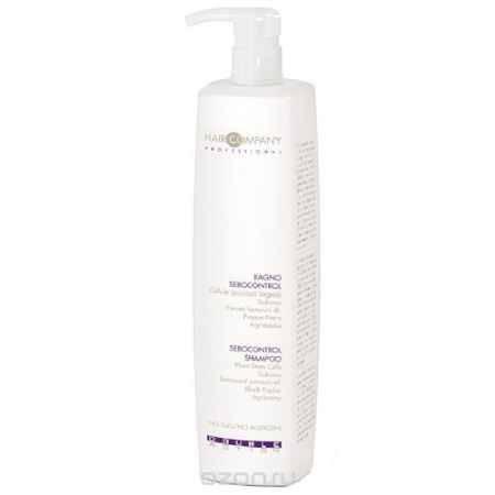 Купить Hair Company Специальный шампунь, регулирующий работу сальных желез Double Action Sebocontrol Shampoo 1000 мл