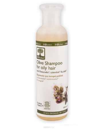 Купить BIOselect Шампунь для жирных волос, 200 мл
