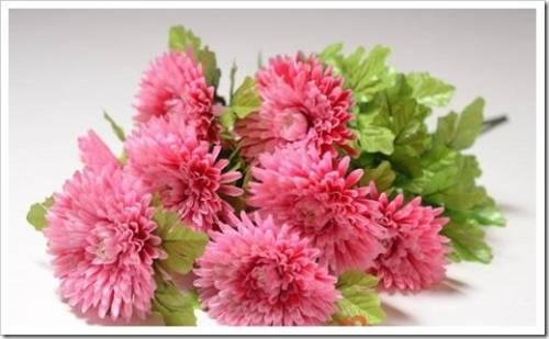 Какие цветы не подойдут для букета в любое время года