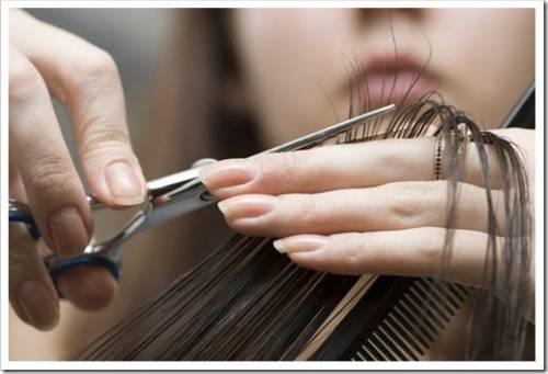 Курсы парикмахеров способы обучить лишь базовым навыкам. Если Вы планируете добиться больших высот в профессии, Вы должны систематически учиться, пробовать и открывать для себя профессию заново. Для этого существуют не только курсы повышения квалификации, но и различного рода конкурсы, ивенты и т.д.