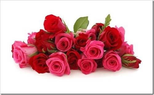 Миллион алых роз, как средство выражения чувств