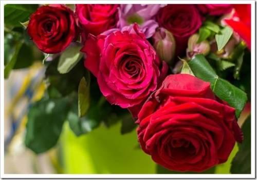Современные коробки с цветами