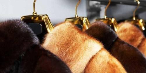Как почистить норковую шубу в домашних условиях