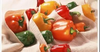 Как купить крышки СКО в Киеве и закрыть салат из болгарского перца на зиму: рецепты