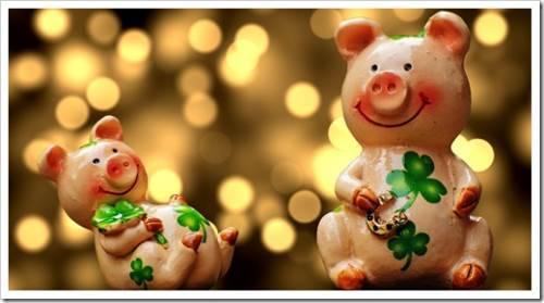 Образование и ремонт в год свиньи