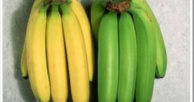 Польза зрелых и незрелых бананов