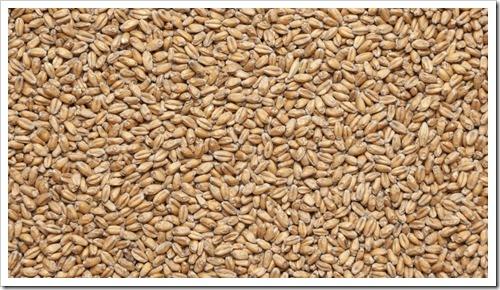 Что такое пшеничный солод и как его использовать